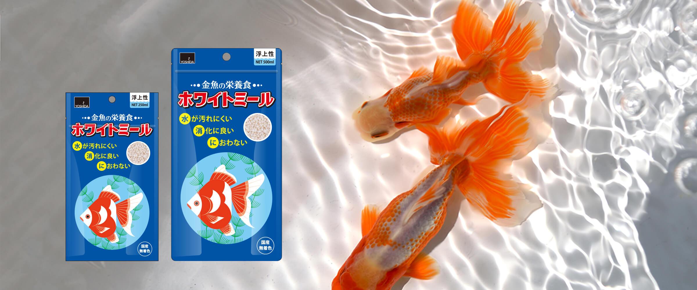 金魚の栄養食 ホワイトミール