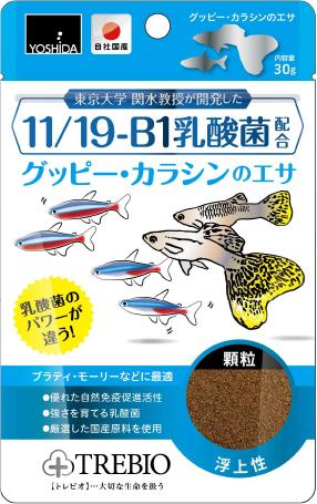 11/19-B1乳酸菌配合グッピー・カラシンのエサ