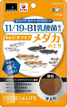 11/19-B1乳酸菌配合トレビオライフ メダカのエサ