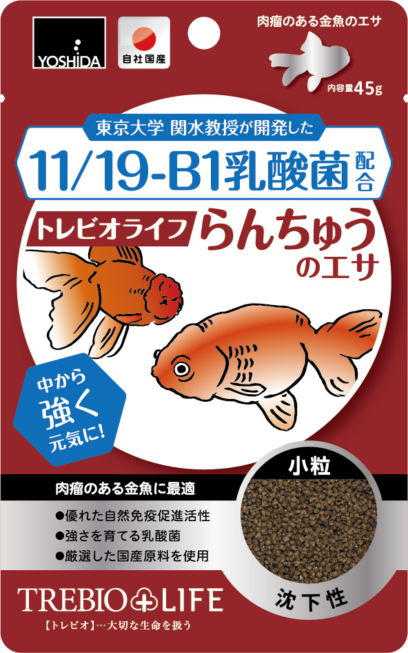 11/19-B1乳酸菌配合トレビオライフ らんちゅうのエサ