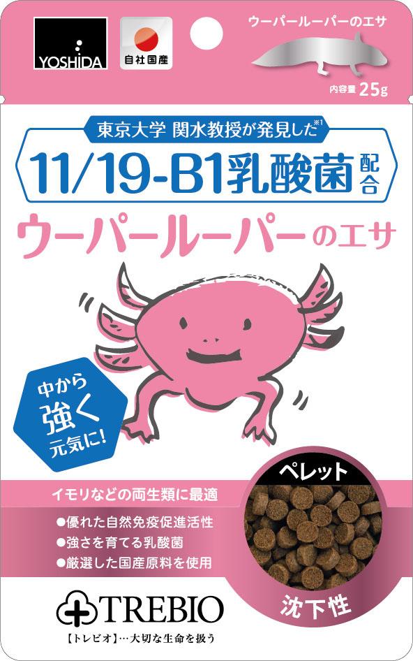 11/19-B1乳酸菌配合ウーパールーパーのエサ