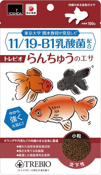 11-19-B1乳酸菌配合のらんちゅうエサ